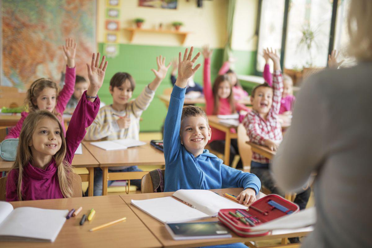 Website voor 9 basis scholen
